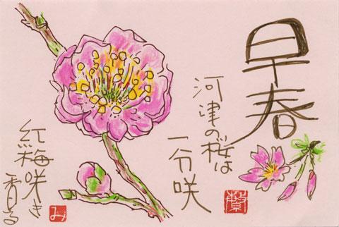 絵手紙「春」