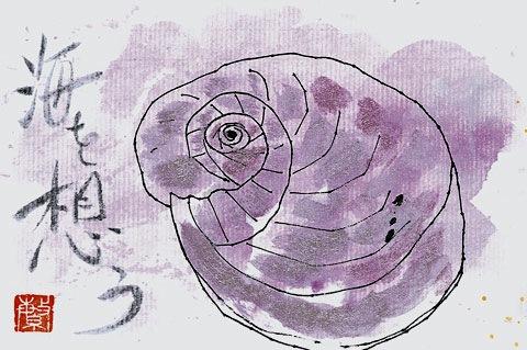 絵手紙 巻貝「海を想う」